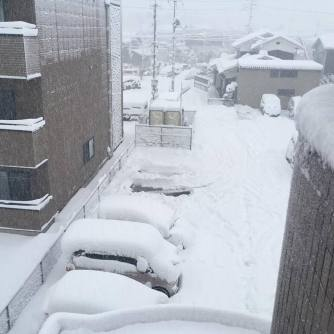 snow_mooore